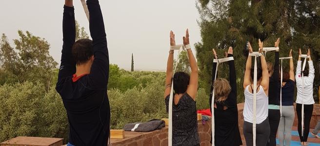 stage de yoga tous niveaux débutants bienvenus